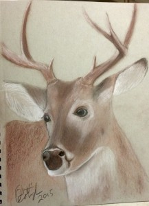 "Finished ""Buck"" Whitetail"