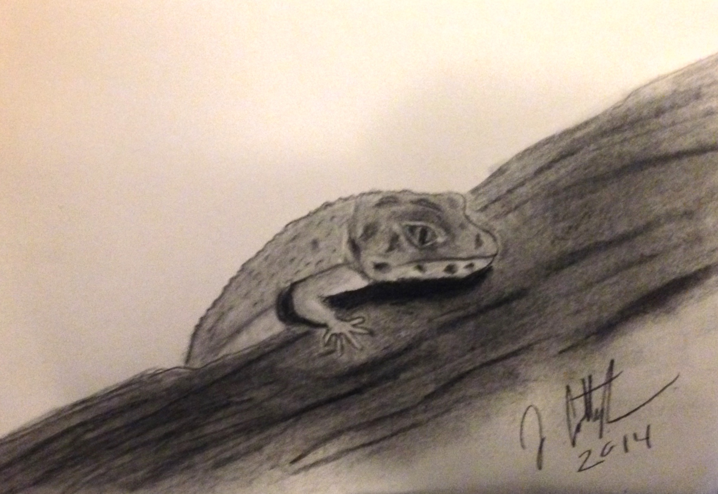 gecko on a log drawing a leopard gecko